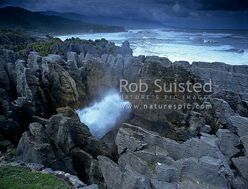 Pancake rocks blow hole in action at Dolomite Point, Paparoa National Park, Buller District, West Coast Region, New Zealand (NZ) stock photo.