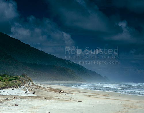 Nettle Beach; Heaphy track, Kahurangi National Park, Buller District, West Coast Region, New Zealand (NZ) stock photo.