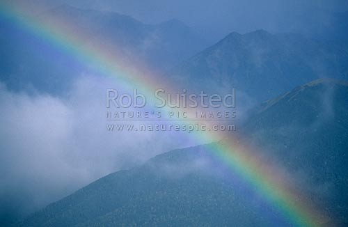 Rainbow over beech forest, Andrews Stream, Canterbury, Arthur's Pass National Park, New Zealand (NZ) stock photo.