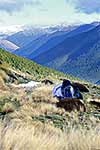 Lewis Pass tent site