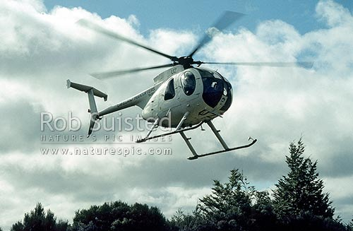 Hughes 500D helicopter airborne, Kaweka Forest Park, Hastings District, Hawke's Bay Region, New Zealand (NZ) stock photo.