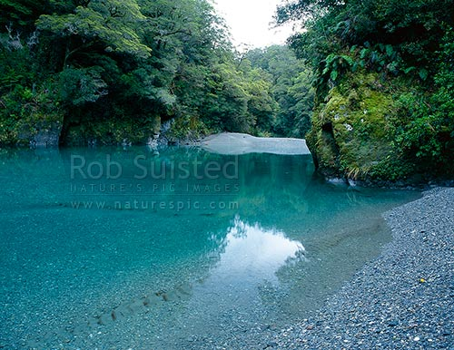 The lower Burke River gorge, tributary of the Haast River, Mount Aspiring National Park, Westland District, West Coast Region, New Zealand (NZ) stock photo.