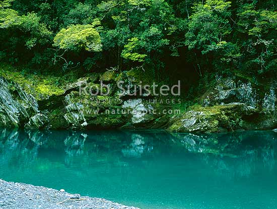 The lower Burke River gorge, tributary of the Haast River, South Westland, Westland District, West Coast Region, New Zealand (NZ) stock photo.