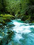 Haast Pass river gorge