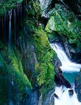 Wilderness waterfall