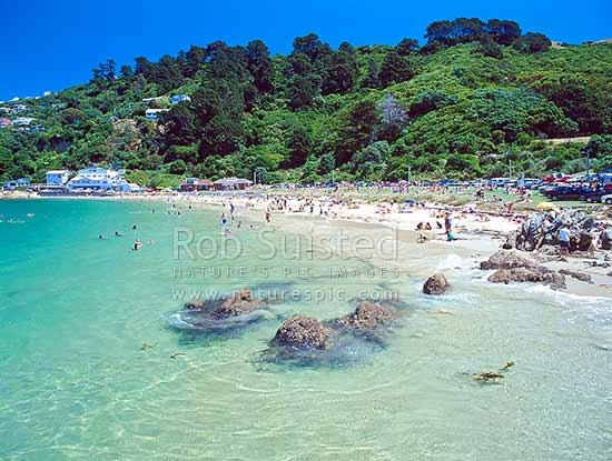 Beaches Near Wellington