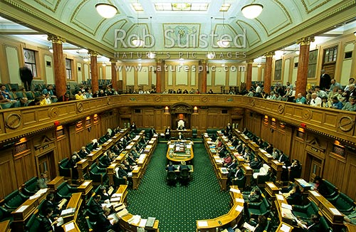 Mps Sitting In The House Of Representatives Parliament