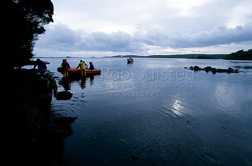 Sub Antarctic tourists landing in small boats at the historic settlement of Hardwicke, Port Ross, Auckland Islands, NZ Sub Antarctic District, NZ Sub Antarctic Region, New Zealand (NZ) stock photo.